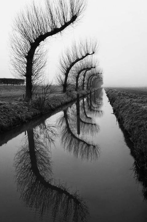 the-repetitive-autumns-and-its-reflections-the-rumination-ofsorrowful-life-2.jpg
