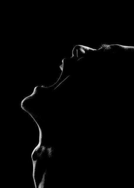 the-scream-of-silenceunheard-yetthe-bosom-of-all-phenomenonthe-scream-o-2.jpg