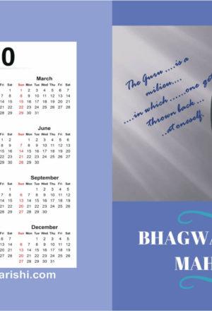 Bhagwan Ramana Maharishi Diary 2020
