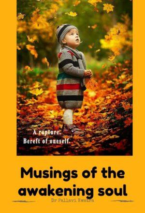 Musings of The Awakening Soul Pocket Card 1