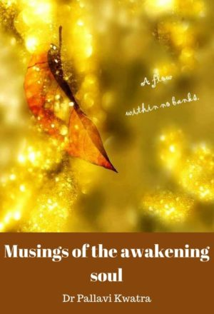 Musings of The Awakening Soul Pocket Card 2