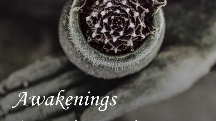 Awakenings E-Magazine Edition-1