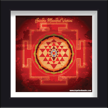 Bindu Mandal Vasini Photo Frame by Dr Pallavi Kwatra