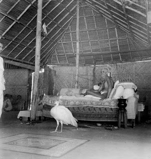 Animal devotees