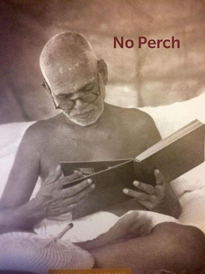 no-perch.jpg